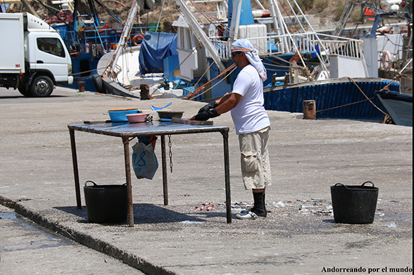 Puesto Pescado Alhucemas