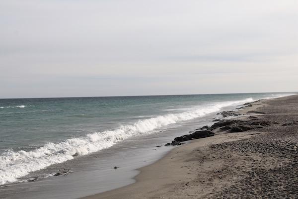 Playa Palmeral