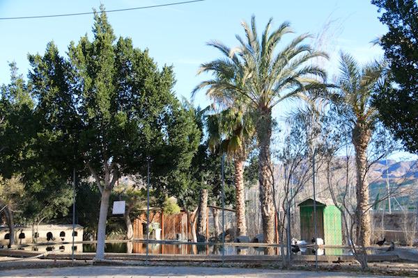 Parque Parque Luis Siret
