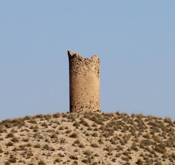 Torre Tardiguera