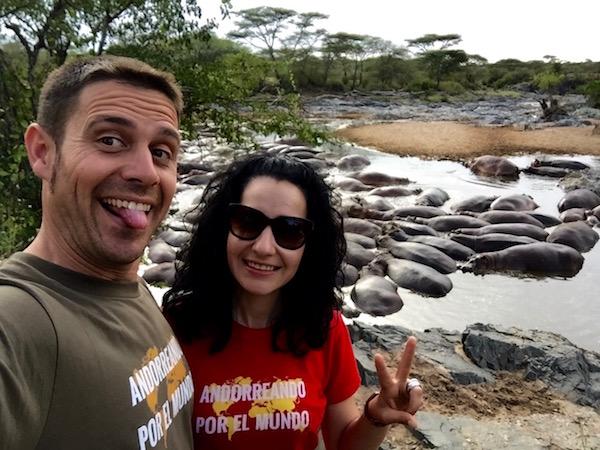 Hipopótamos Serengeti-Andorreando por el Mundo.