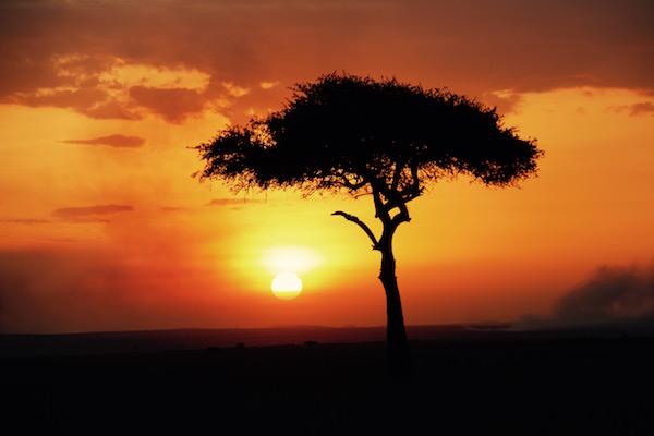 Puesta Sol Lago Nakuru-Andorreando por el Mundo