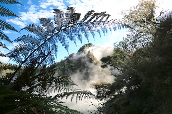 Valle Volcánico Waimangu-Andorreando por el Mundo