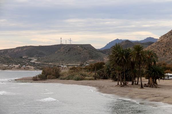 Playa Las Palmeras