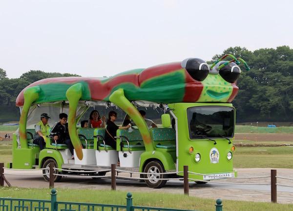 Autobús Turístico Corea del Sur