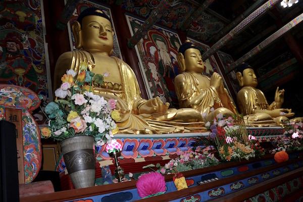 Budas Templo Daeungbojeon