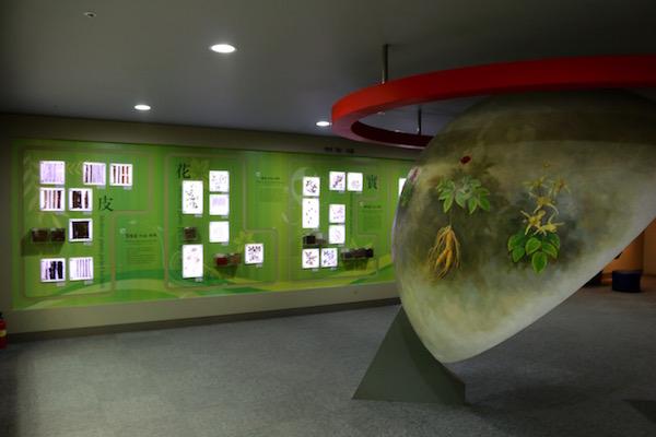 Sala museo de Medicina Oriental Yangnyeongsi