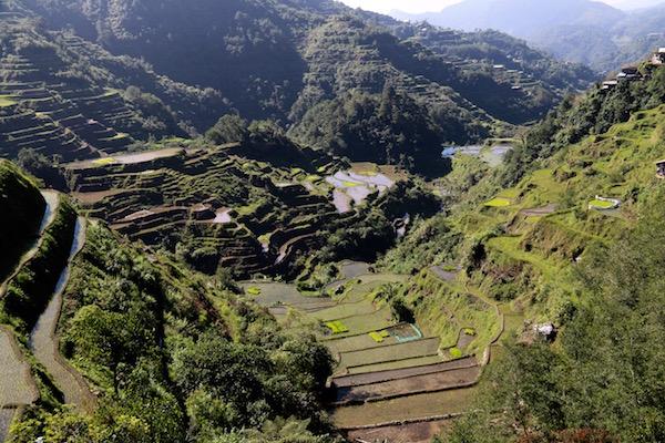 Terrazas Arroz Banaue