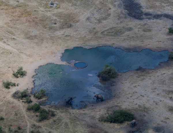 Parque Nacional de Zambezi