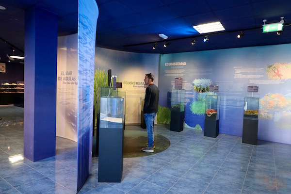 Exposiciones Centro de Interpretación del Mar