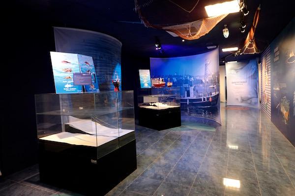 Sala Centro de interpretación del Mar