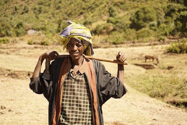 Campesino Etiope