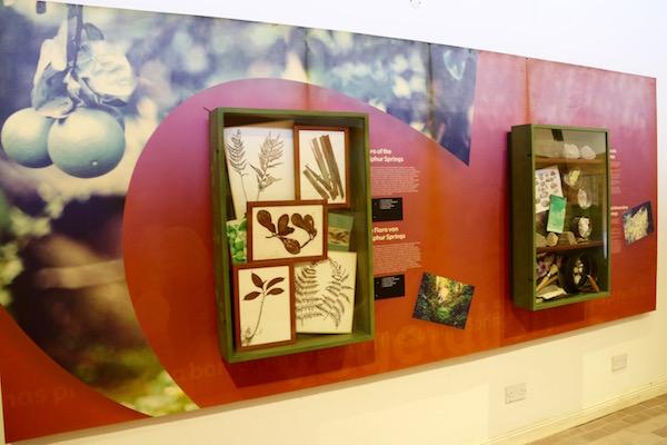 Exposición Centro Visitantes