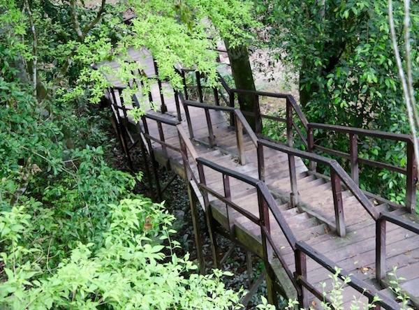 Escaleras de acceso.